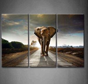 3 Panel Wall Art Elephant on Canvas
