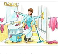 Professional House Housekeeping