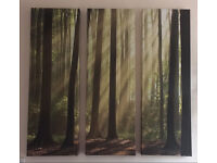 Next forest wall canvas