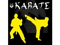 Karate Class Dungannon First Class FREE