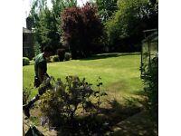 Strimmer Man, Gardener, Gardening Services