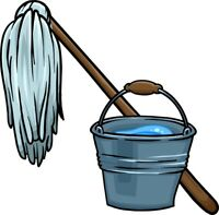 Evening and Weekend Cleaner Available $20/hour