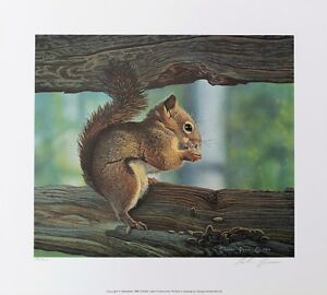 LE Prints, Red Squirrel and others by Canadian Wildlife Artist