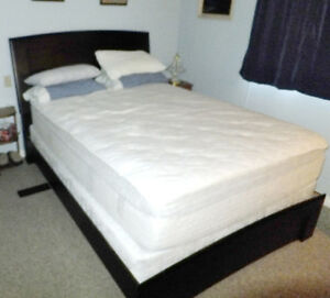 Queen platform bed frame & box spring.