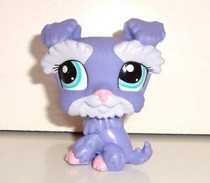 Figurine petshop littlest pet shop chien violet dog pero - Chien pet shop ...