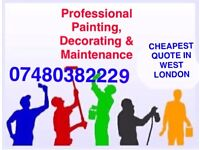 Professional Painter Decorator Handyman Floor layer Garden and Household Maintenance