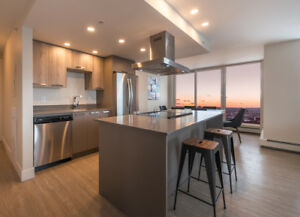 Spacious luxury 2 bedroom with a spectacular Panoramic view!!