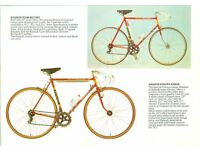 Wanted 70's/80's Raleigh Europa vintage racing bicycle