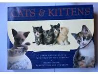 Cute Cat cards & envelopes