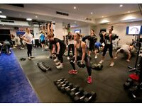 F45 Kingston are looking for Fitness Instructors