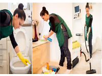 9£/h,High Quality,Detailed,Domestic Cleaning,Carpet Cleaning,End of Tenancy Cleaning,House Cleaner