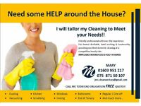 **DOMESTIC CLEANER**
