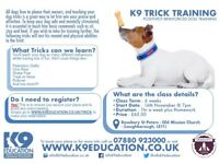 K9 Tricks Dog Training - Starts Thursday 16th November 2017 at 7pm