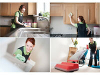 11£an hour no extra cost,Professional,Cleaning Lady,Domestic Cleaner,End of Tenancy Cleaning,Cleaner