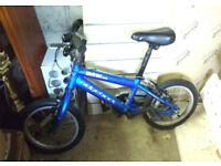 Kids ridgeback MX14 blue bike