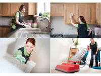 Professional,Carpet Cleaning,Cleaning Lady,Domestic Cleaner,End of Tenancy Cleaning,House Cleaner