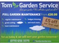 Maintenance of gardens Tom garden service