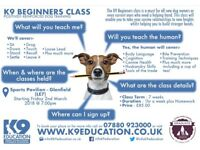 K9 Beginners Class - Starting Friday, 2nd March 18 @ 7pm - Book Your Place Now!!!