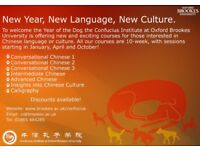 New Chinese Language and Culture Courses