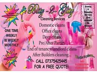 Domestic Cleaning Services!
