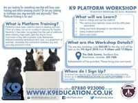 K9 Beginners Platforms 1 Day Workshop - Saturday 7th April 2018 - 9.30am until 17.00pm