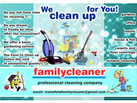 PROFESSIONAL CLEANING COMPANY SERVICE
