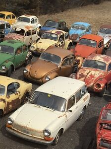 Collection of Vintage Volkswagens