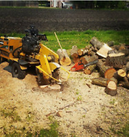 BEST RATE STUMP GRINDING