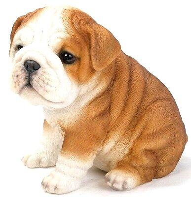 SITTING  BULLDOG PUPPY DOG NEW LIFE LIKE REALISTIC STATUE HOME GARDEN DECOR