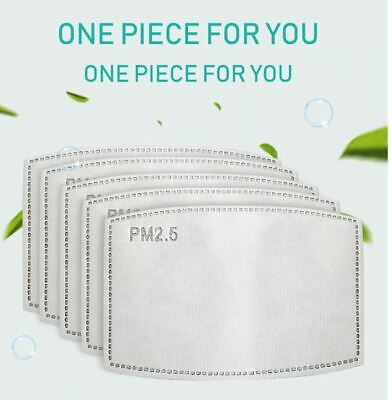 PM2.5 Activated Carbon Filter Replaceable Anti Haze Filter Air Paper 20/50/100