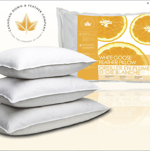 White goose down pillow 2 For $42