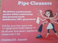 Domestic and Commercial Cleaner