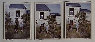 3 photos couleur chien loup berger allemand maîtresse donner la patte 1969