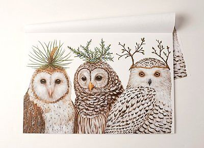 Kitchen Papers Winter Owls Paper Breakfast Lunch Dinner Party Placemats