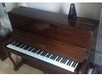 Private piano teacher, all levels