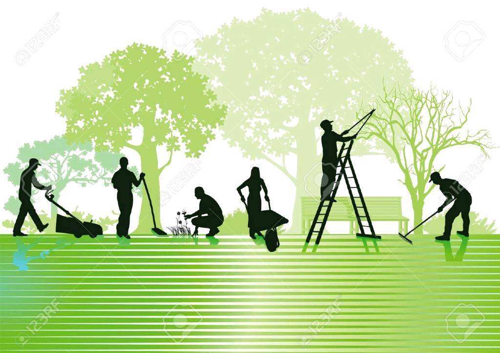 Landscape Gardening High Wycombe : Garden maintenance in high wycombe buckinghamshire