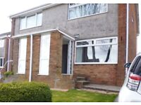 Lovely 2-bedroom house to rent (Morriston)
