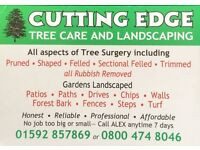 Cuttingedge tree care and landscapes