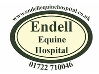 Experienced Equine Nurse Required