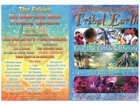 More than a Festival - Summer Gathering for Adults & children with workshops, music, fire show ....
