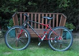 Raleigh Activator 2 Bike