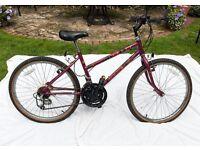 Girls Track Bike - Raleigh Camaro
