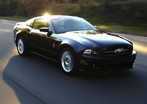2013 Ford Mustang V6 ONLY 29645 KMS!!!
