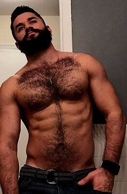 Shirtless Male Muscular Beefcake Hairy Chest Abs Beard Muscle Man PHOTO 4X6 D686