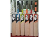 WOMBAT CRICKET BAT, 46MM THICK, SPECIAL T-20 EDITION