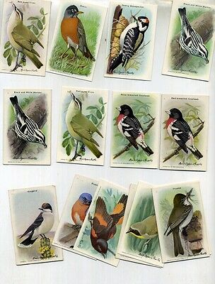 Church And Dwight Vintage Bird Card Ninth Series Lot Of 15