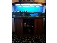 Jewel vision 450 fish tank. Still for sale. Need it gone this weekend.