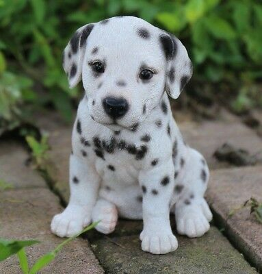 (Sitting DALMATIAN Puppy Dog - Life Like Figurine Statue Home/ Garden NEW)
