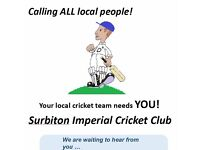 Your Local Cricket Team Needs YOU! Friendly Cricket in SW London and Surrey