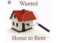 Looking for 3 bed House for rent in Newry